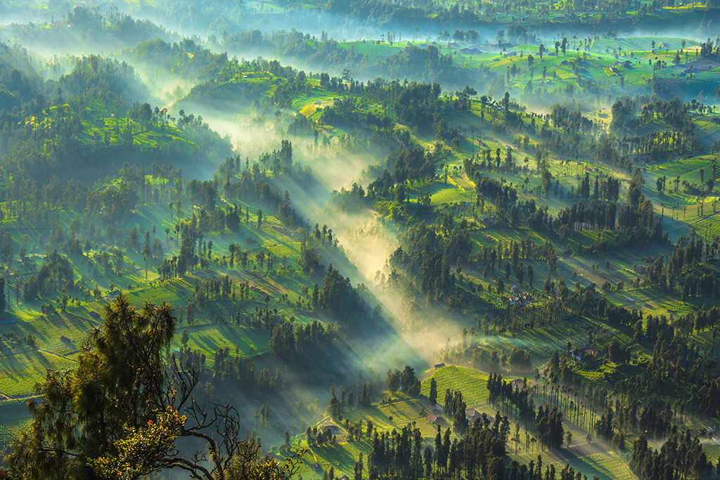 CemoroLawang, Bromo, Indonesia Sony A77 | 70-300mm F4.5-5.6 G SSM | Aperture : f/11 | Shutter Speed : 1/80 sec | ISO : 50